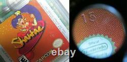 Shantae Game Boy Color Authentique Original Game! Collectionneurs Condition Batterie Ok